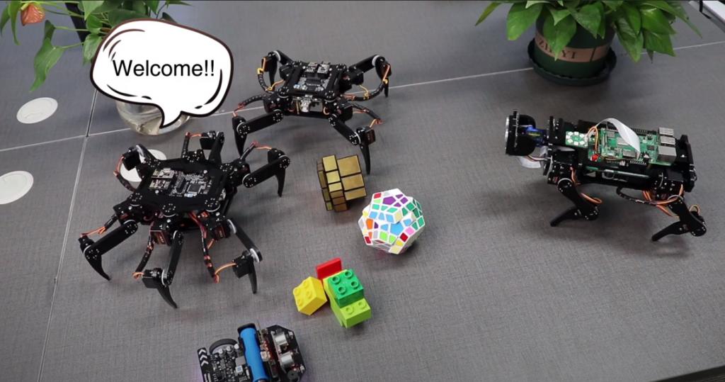Raspberry Pi Zero Robotics